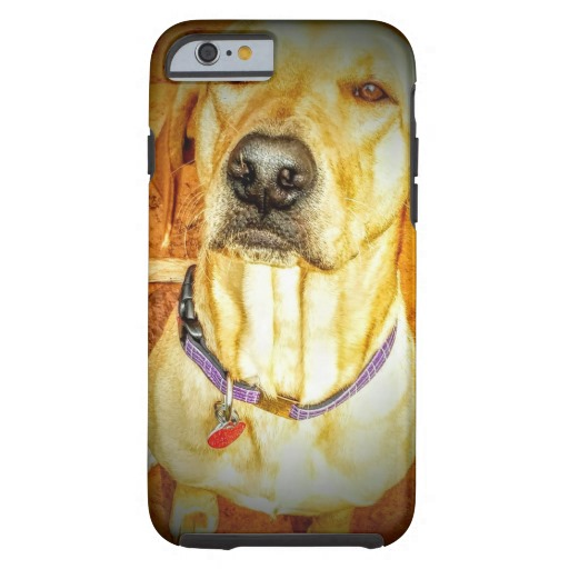 stynetski_cute_dog_cute_puppy_iphone_6_case